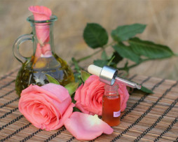 Aromatherapy concept.Bottles of essence oil with roses.